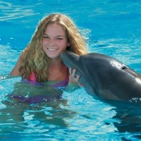 Sightseeing_SwimwiththeDolphins